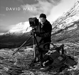 david-ward