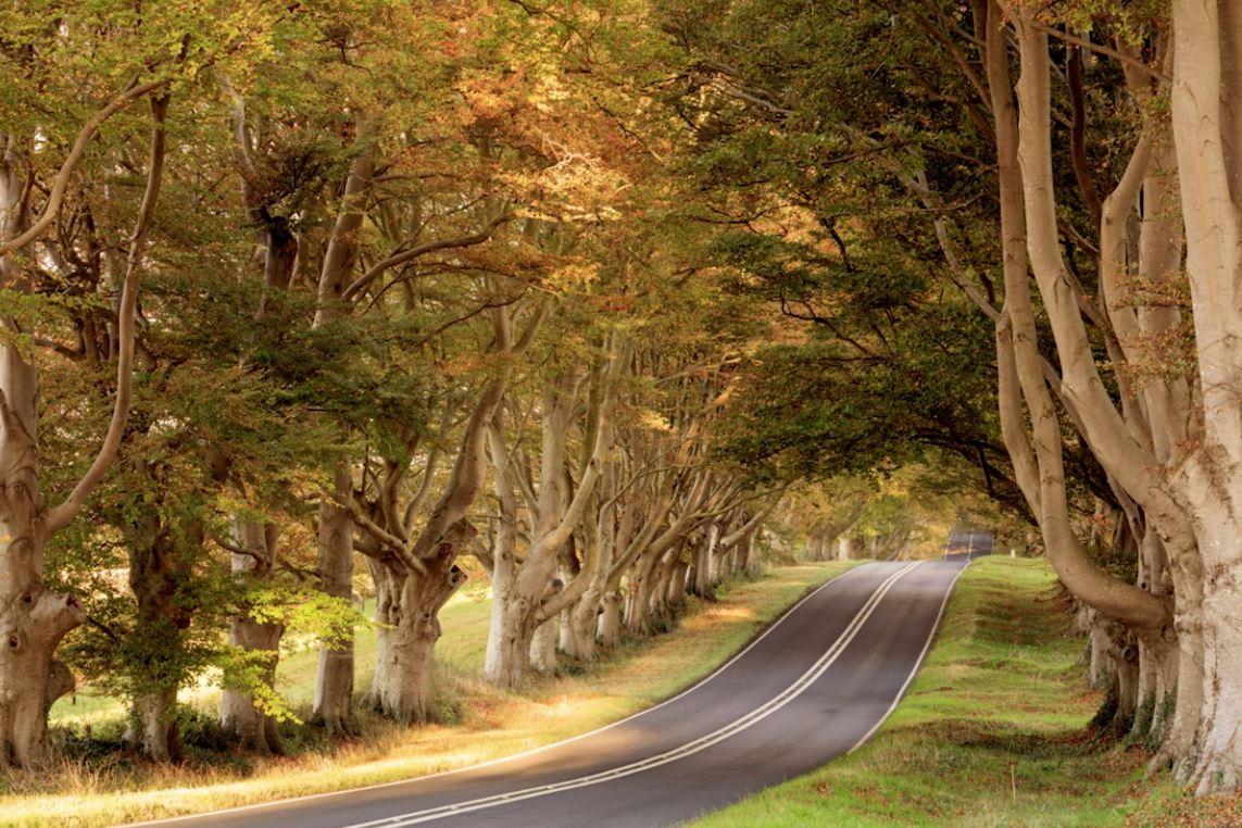 Lee filters effect sets mark bauer autumn set